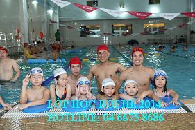 Lễ hội bơi miễn phí